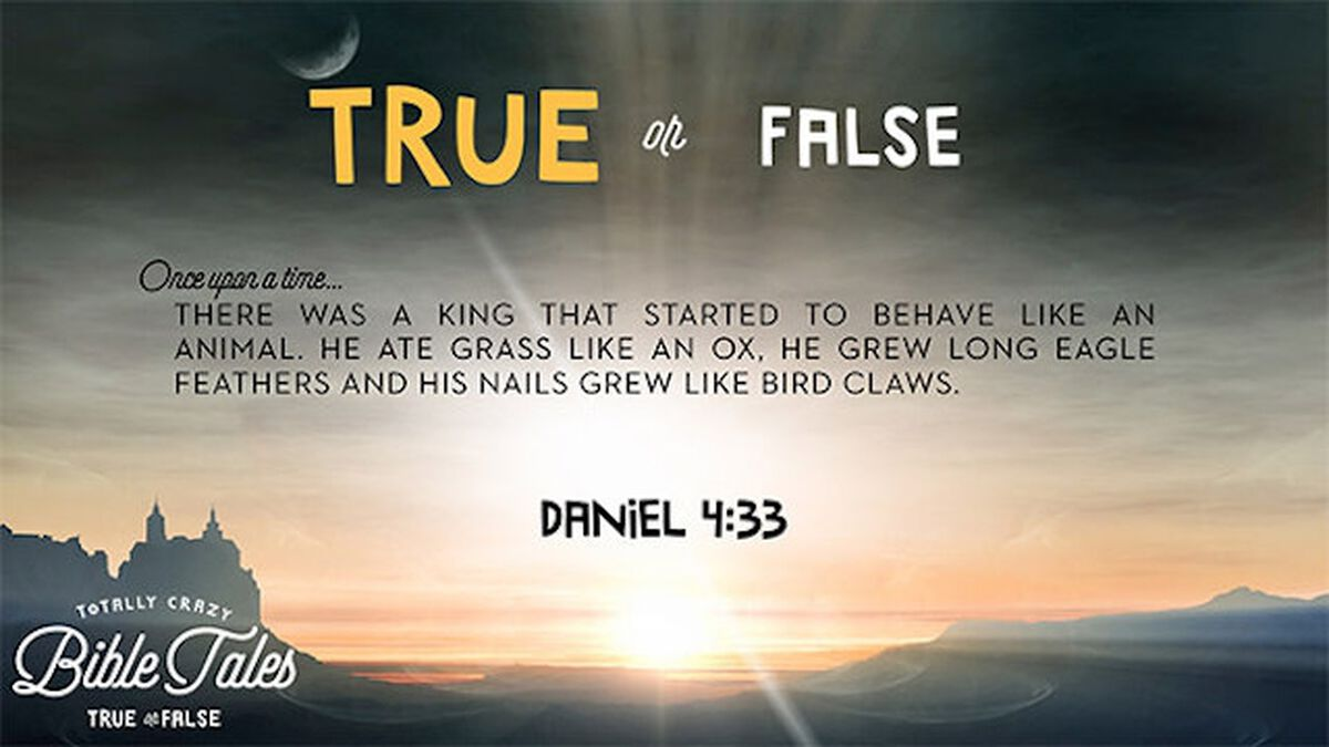 Totally Crazy Bible Tales (True or False) image number null