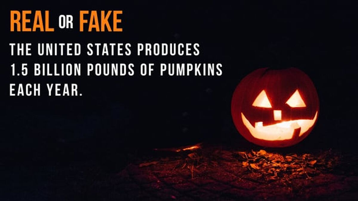 Real or Fake: Halloween Edition image number null