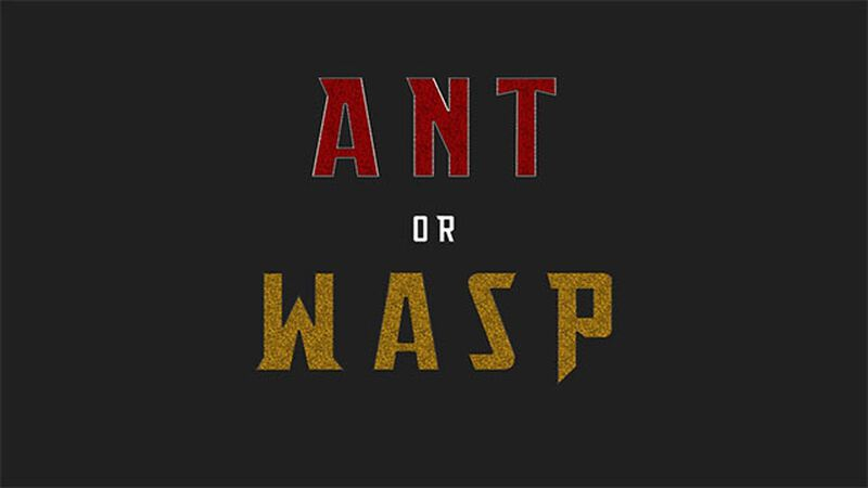 Ant or Wasp
