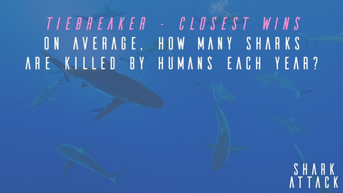 Shark Attack 2 image number null