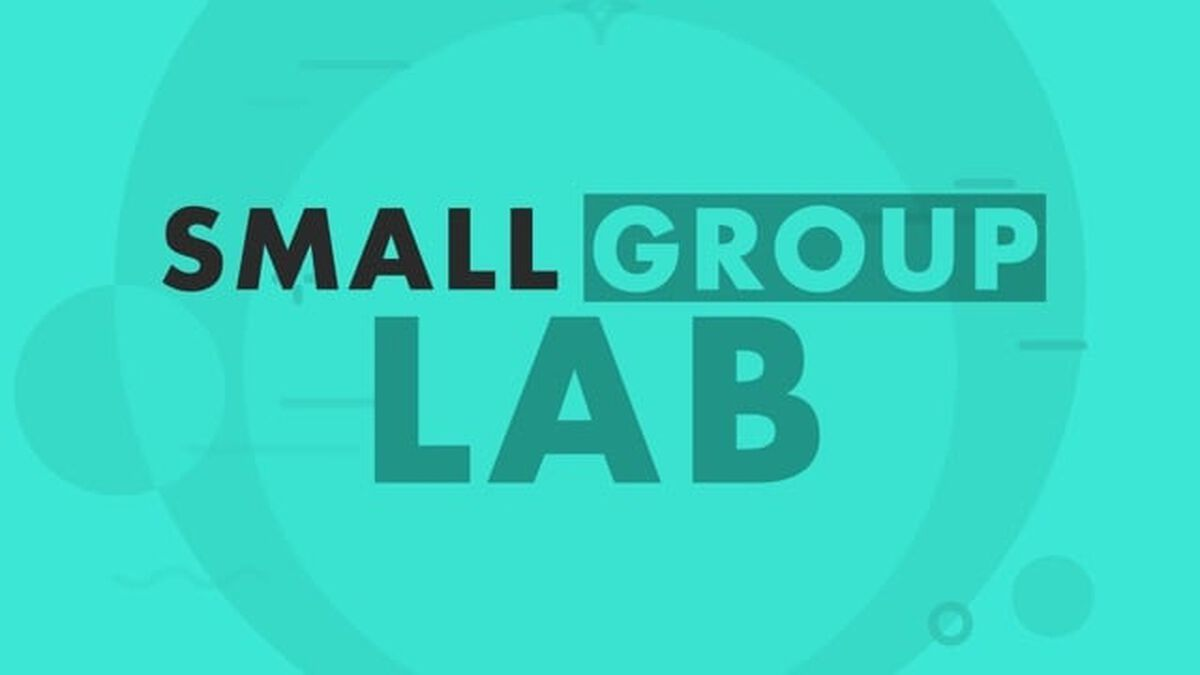 The Small Group Lab image number null