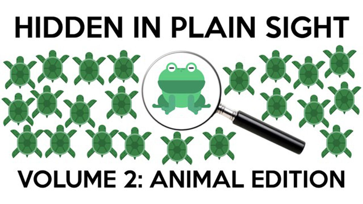 Hidden in Plain Sight 2: Animal Edition image number null