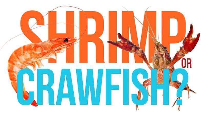 Shrimp or Crawfish (May 10th, National Shrimp Day)