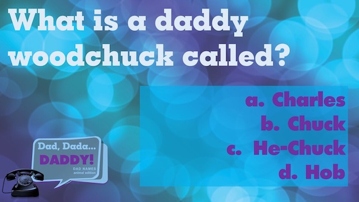 Dad, Dada, Daddy Dad Names: Animal Edition image number null
