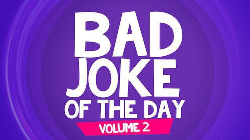 Bad Joke of the Day: Volume 2