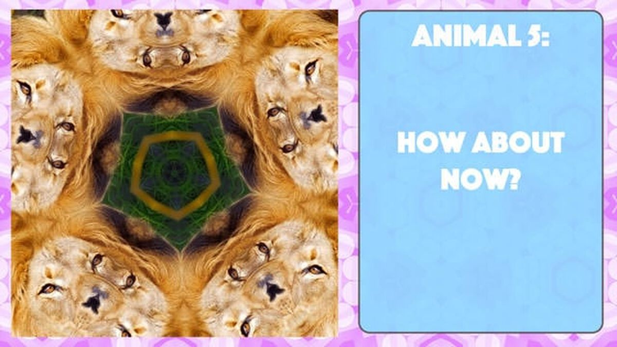 A Kaleidoscopic Quiz Vol. 2 image number null
