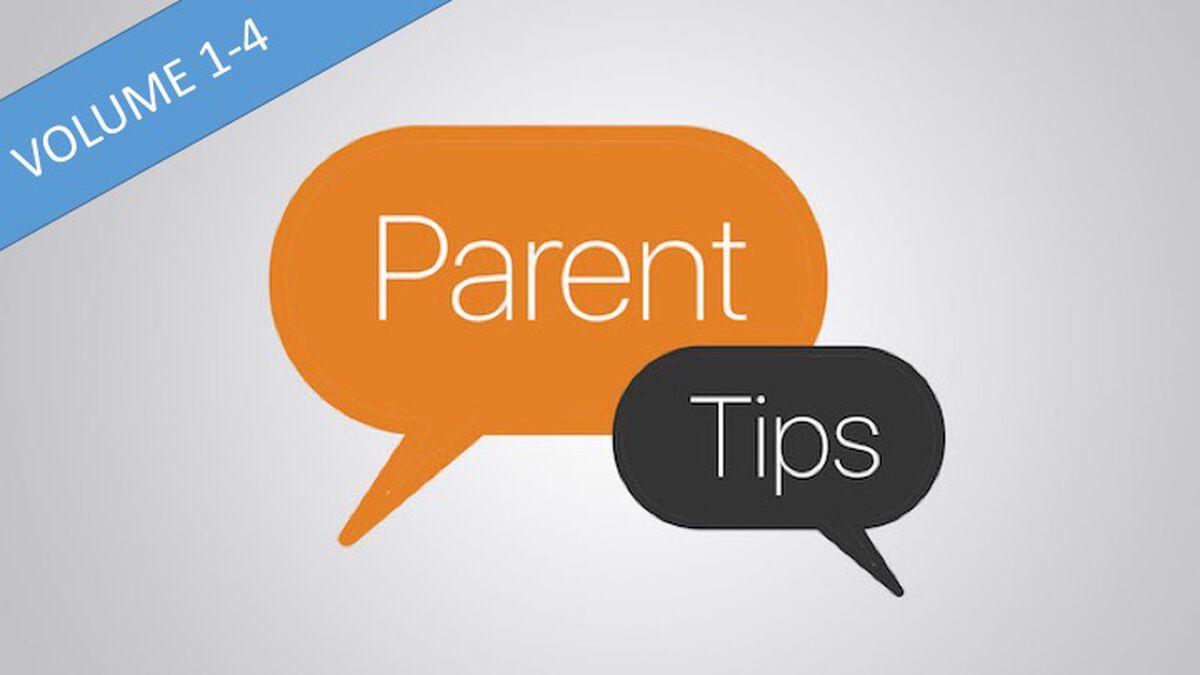 DYM Parent Tips Bundle Volumes 1-4 image number null