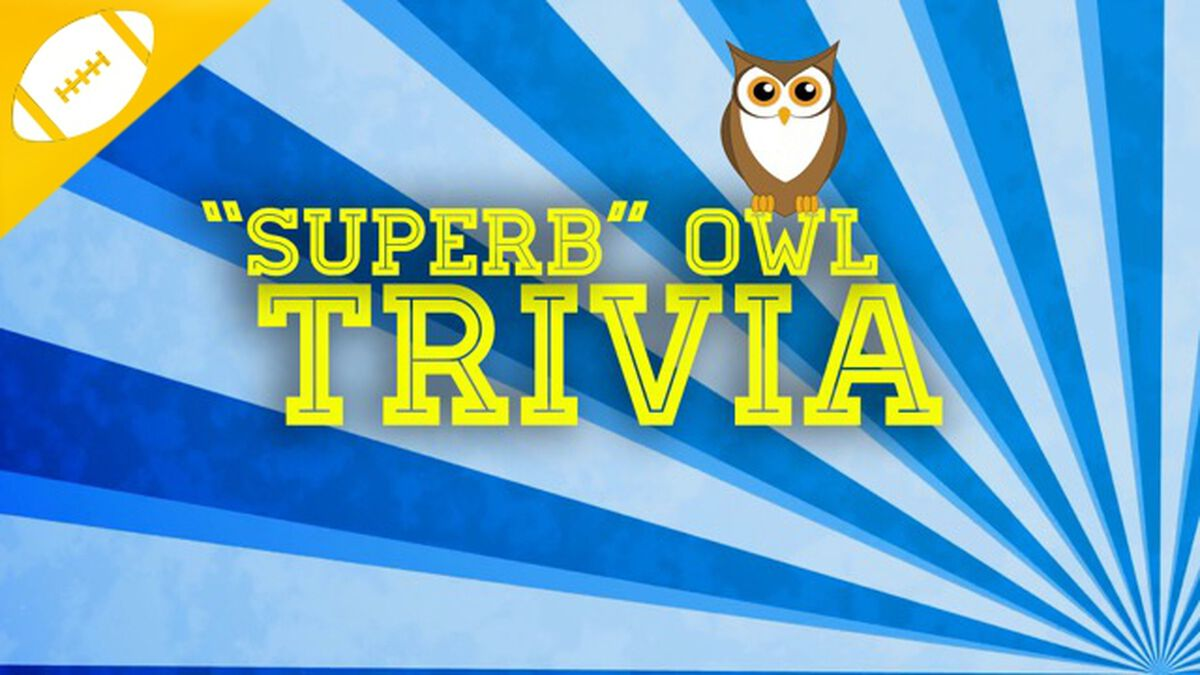 """""""Superb"""" Owl Trivia- It's A Hoot! image number null"""