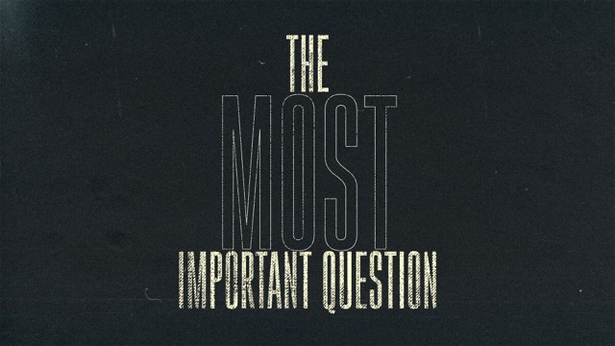The Most Important Question image number null