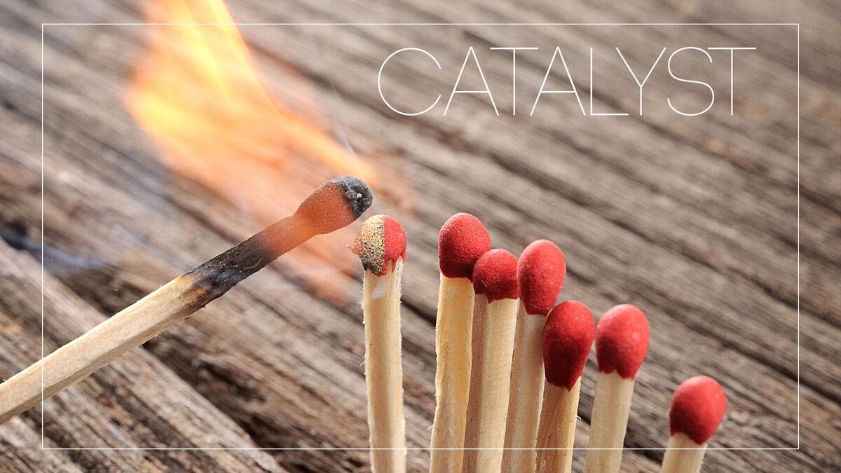 VIVA: Catalyst image number null