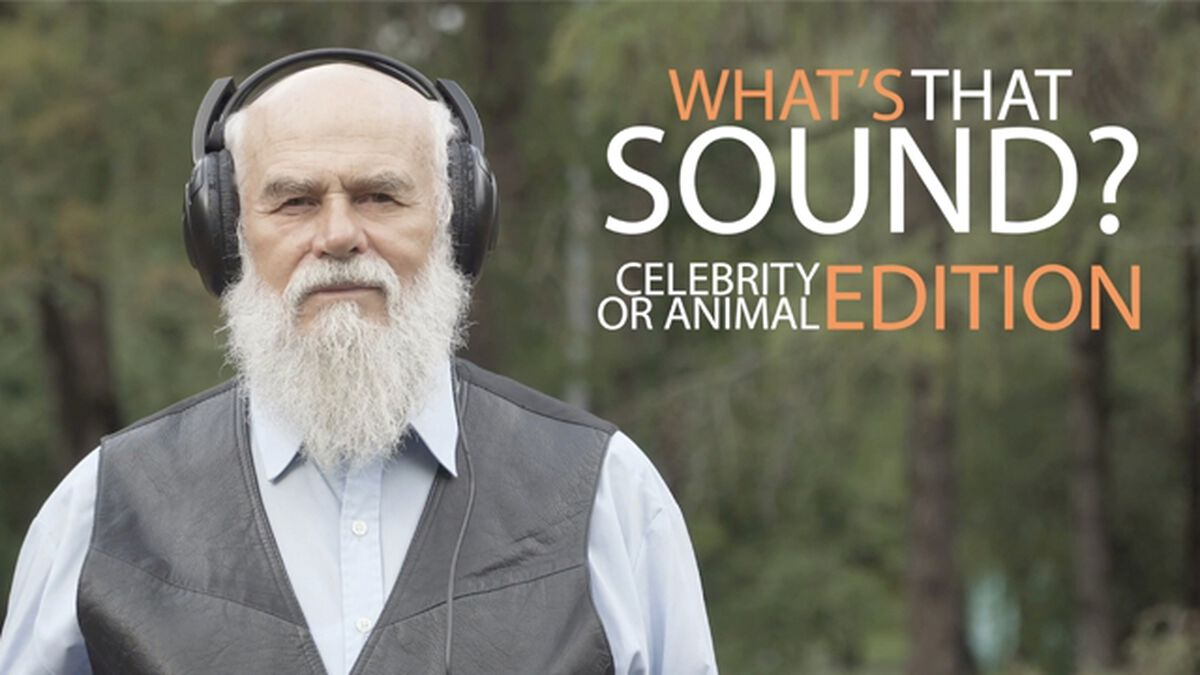 What's That Sound: Celebrity Edition image number null