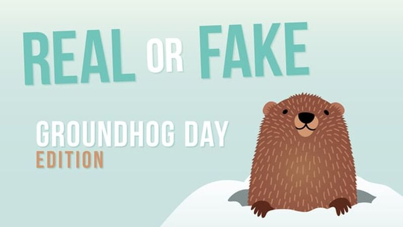 REAL OR FAKE: Groundhog Day Edition