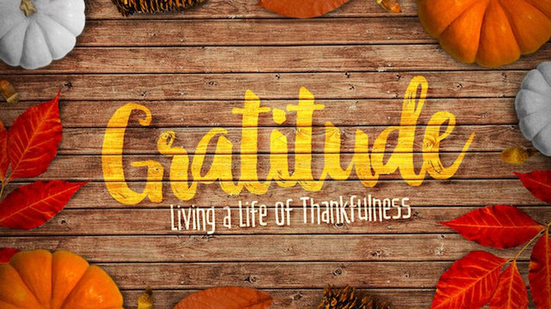 Gratitude Series: Creative Elements