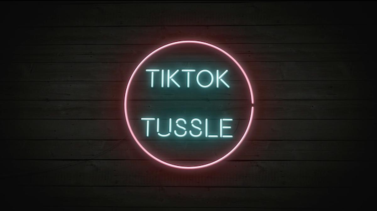 TikTok Tussle  image number null
