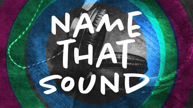Name That Sound Game