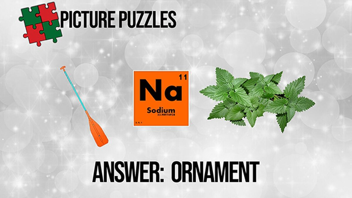 Picture Puzzles Christmas Edition image number null