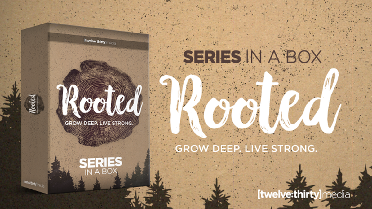 Rooted Series: Creative Elements  image number null
