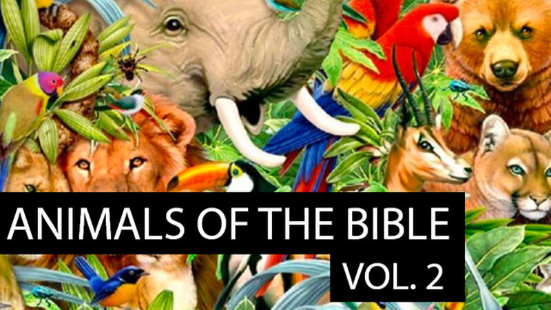 Animals in the Bible: Volume 2
