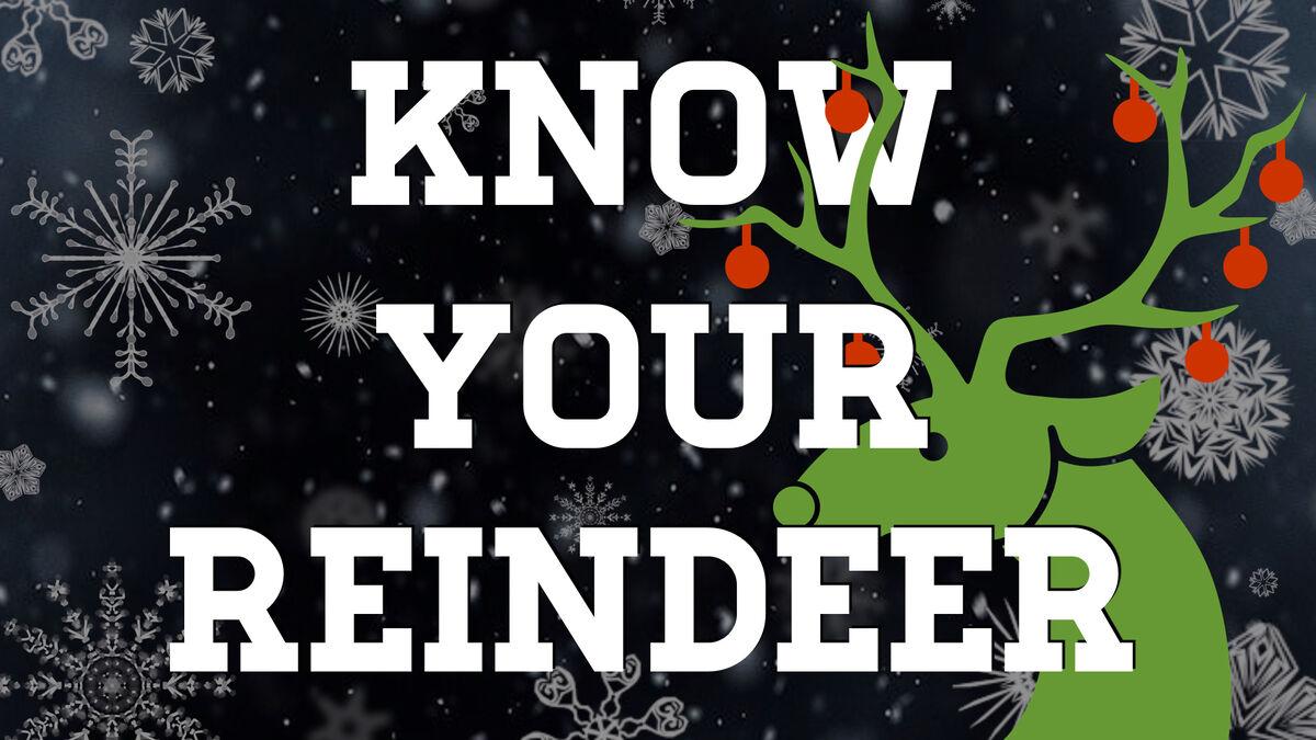 Reindeer Games Bundle image number null