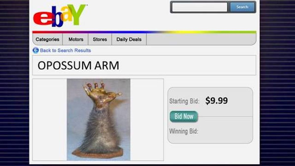 Sold on eBay? Volume 2 image number null