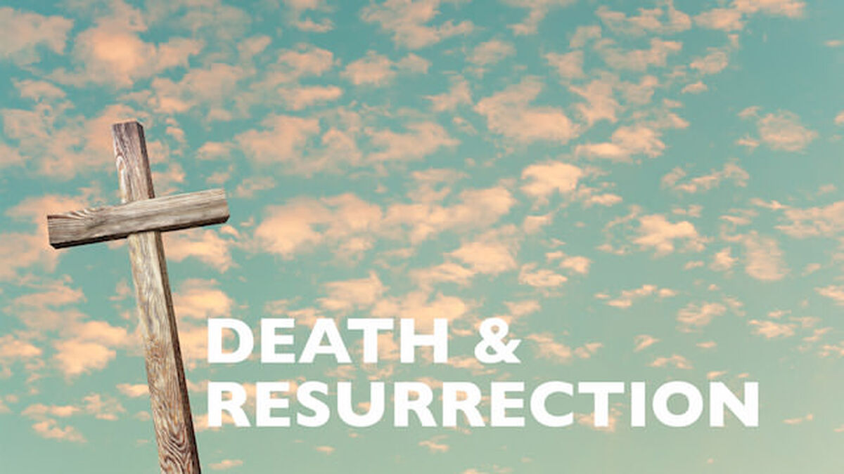 Viva! Death and Resurrection image number null