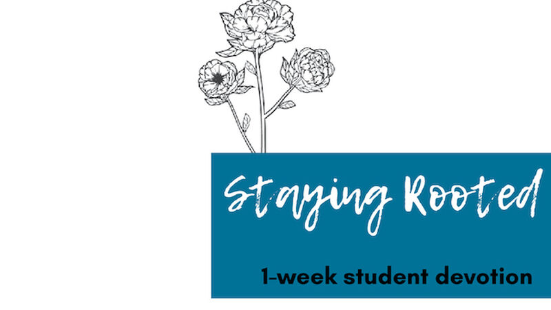 Staying Rooted A Girls' Quiet Time Devotional