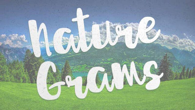 Naturegrams: Mountains & Hills