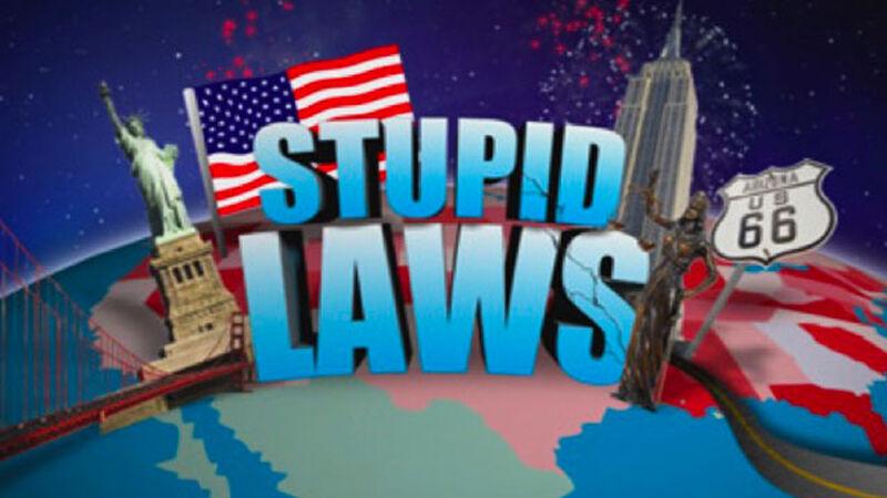 Dumb USA Laws