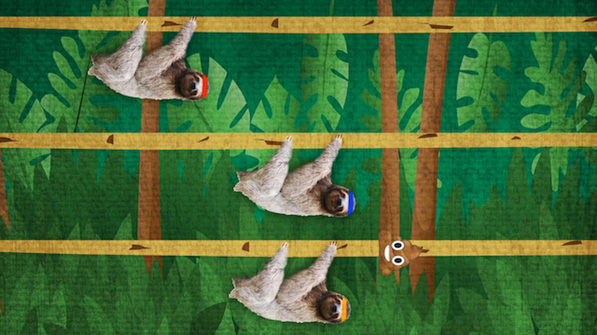 Sloth Race image number null