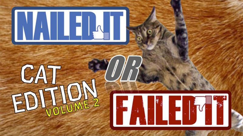 Nailed It or Failed It: Cat Edition Volume 2