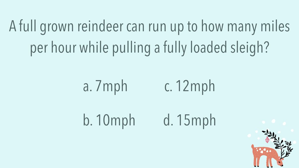 Reindeer Trivia image number null