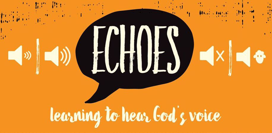 Echoes: a DNOW Study
