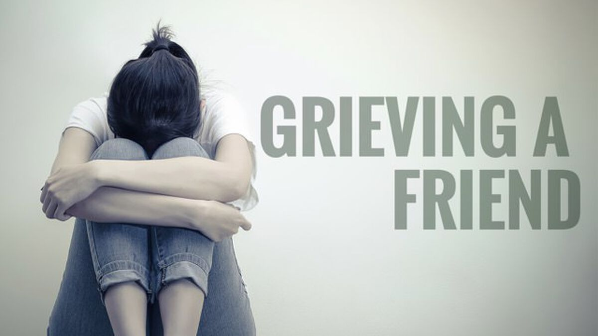 Grieving A Friend image number null