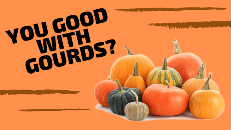 Are You Good with Gourds?