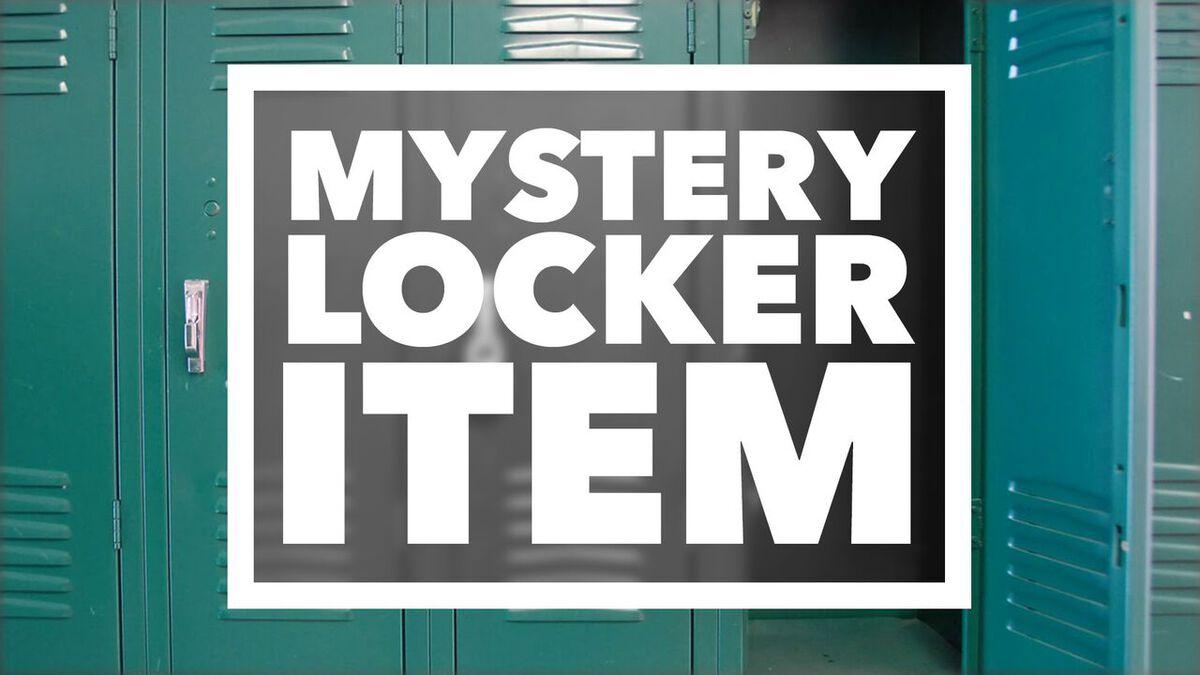 Mystery Locker Item image number null