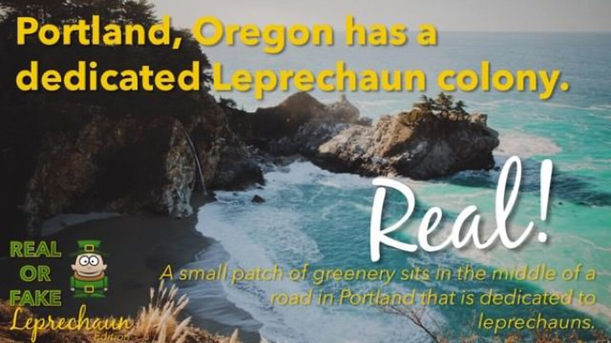Real or Fake: Leprechaun Edition image number null