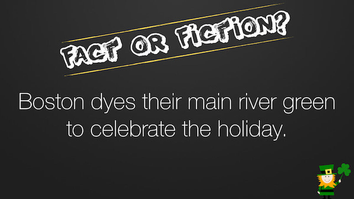 Fact or Fiction St Patrick's Day Edition image number null