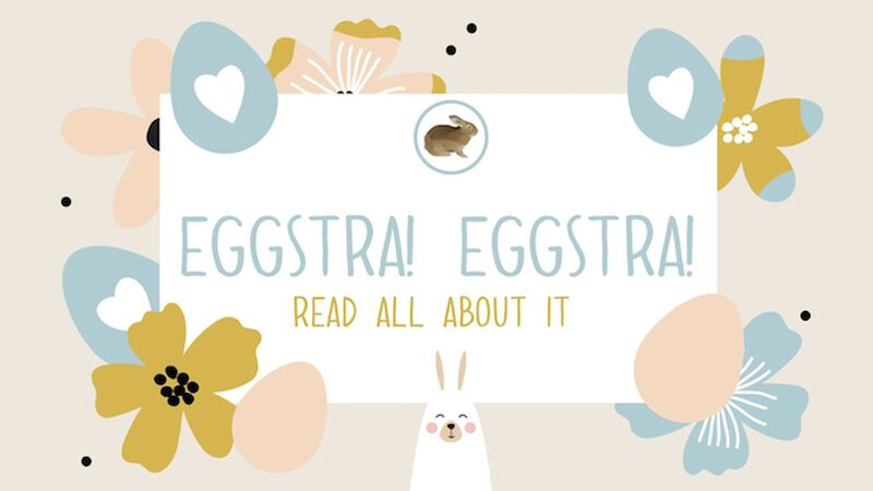 Eggstra Eggstra Read All About It