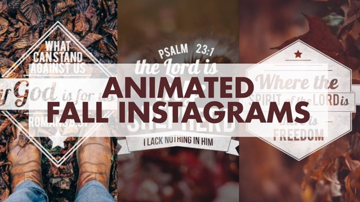 Animated Fall Instagrams image number null