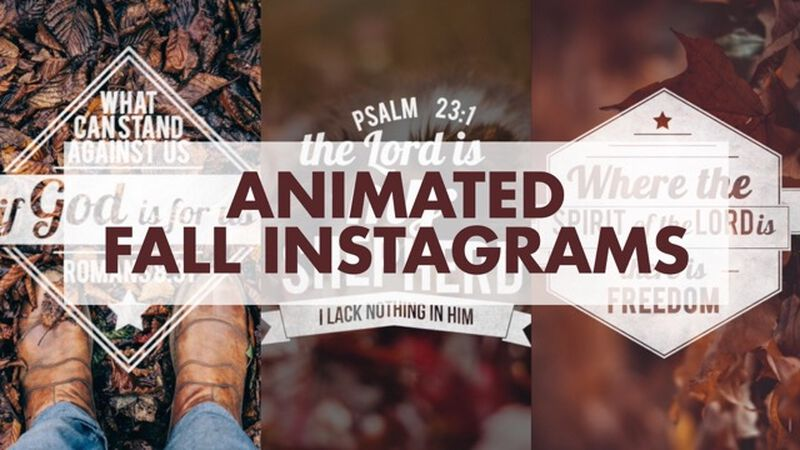 Animated Fall Instagrams