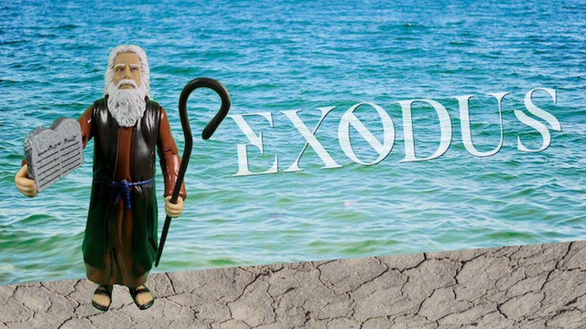 Exodus image number null