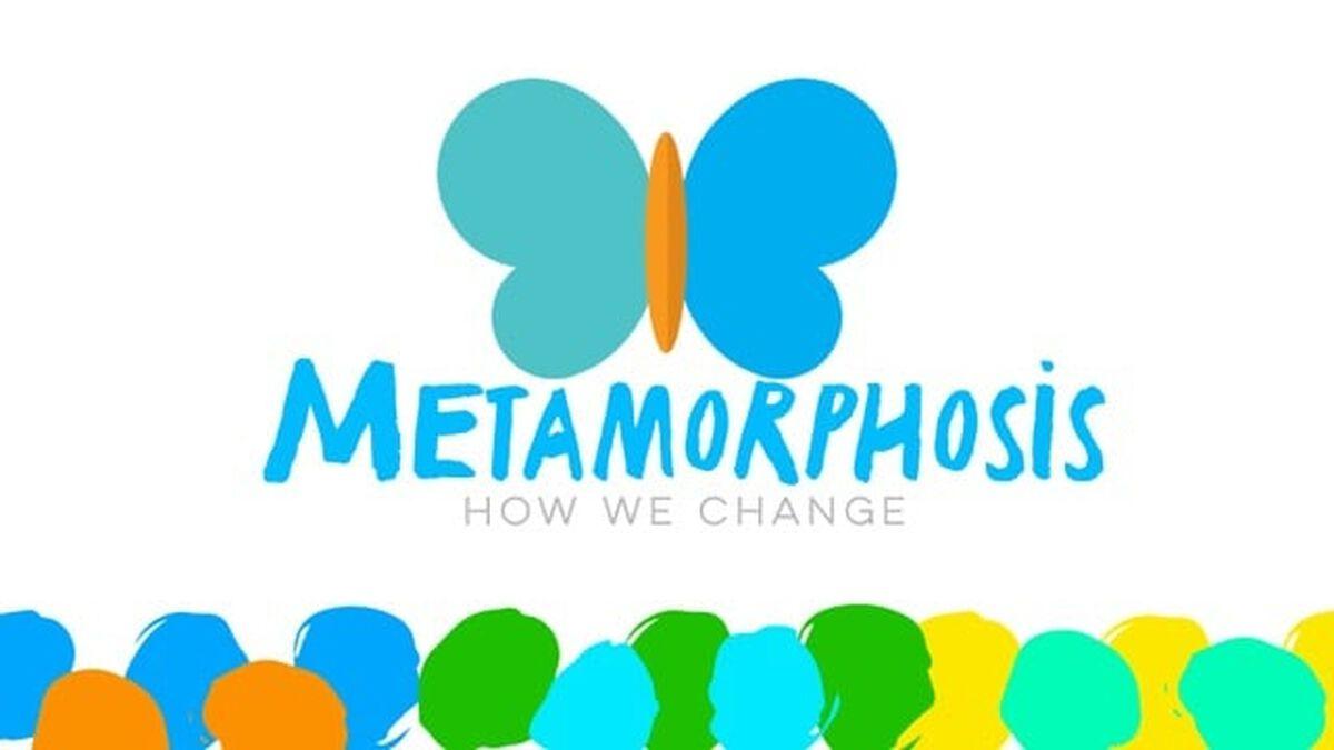 Metamorphosis image number null