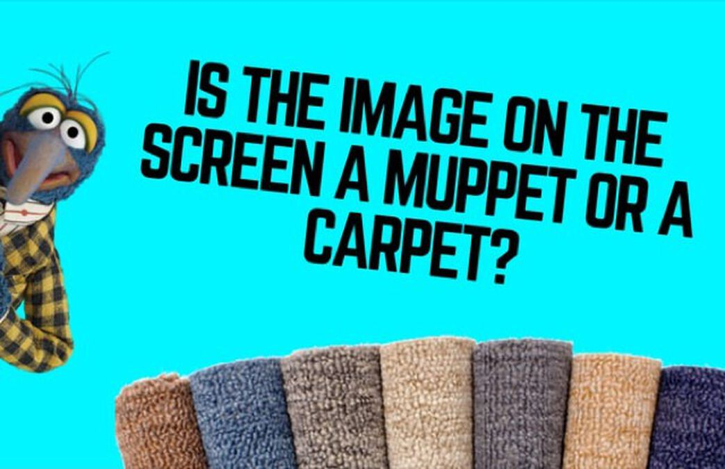 Muppet or Carpet  image number null