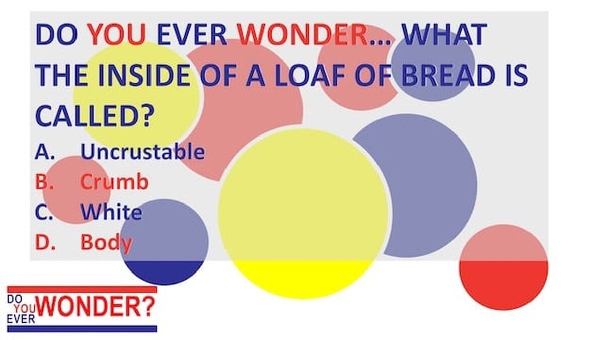 Do You Ever Wonder Bread Trivia image number null