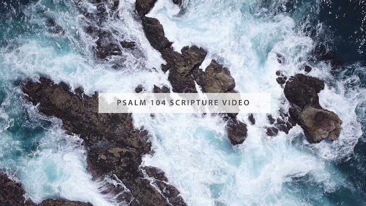 Psalm 104 Scripture Video image number null
