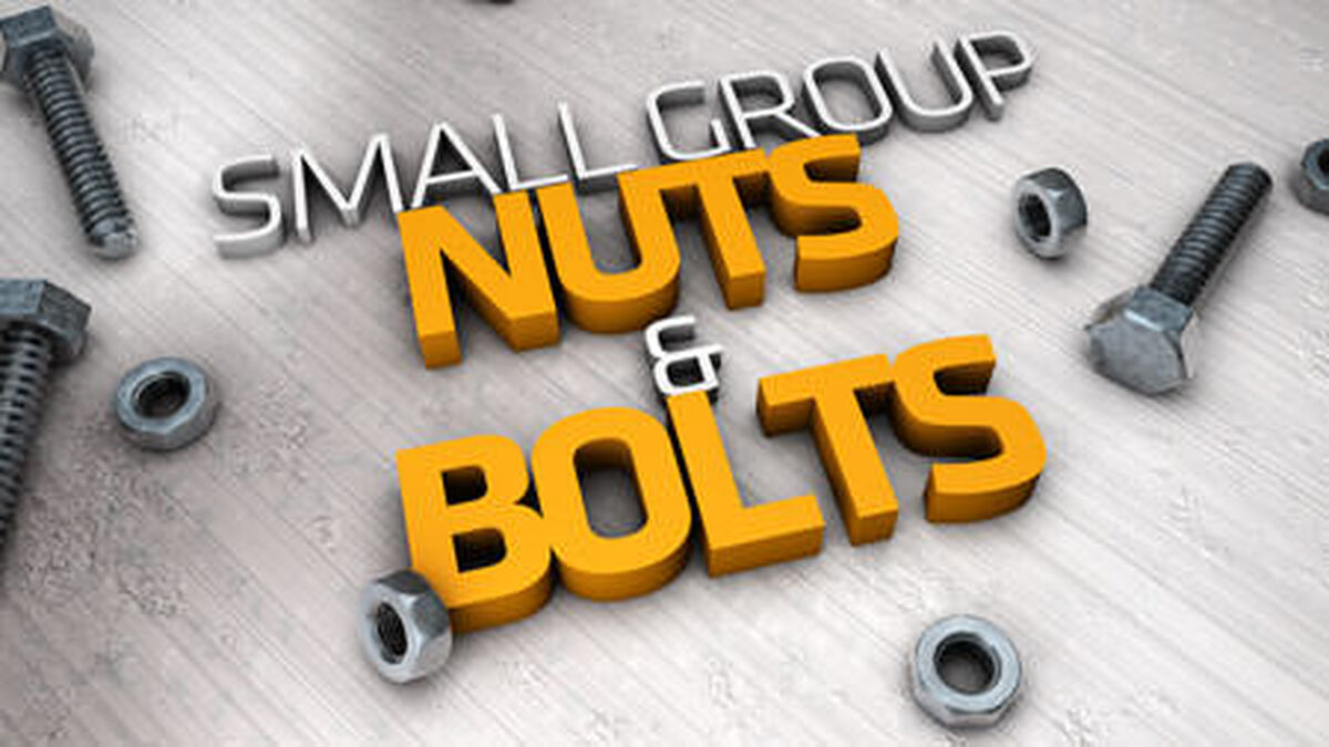 Small Groups Nuts and Bolts image number null