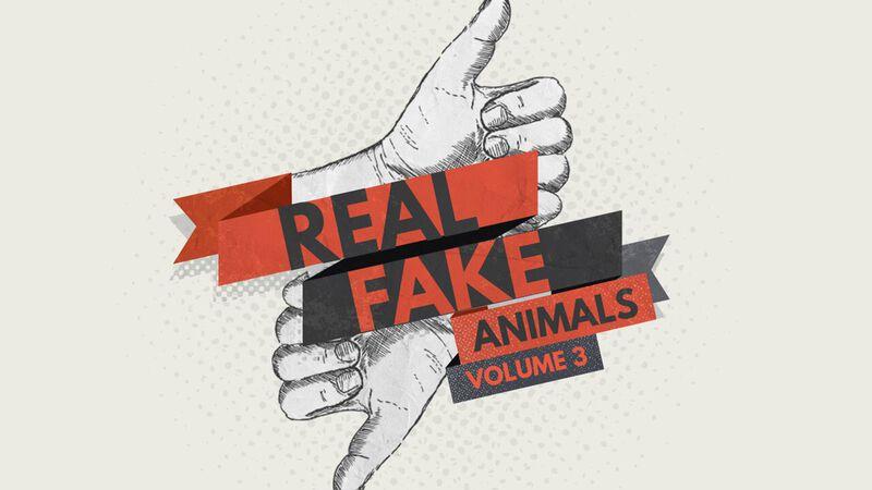Real/Fake: Animals Volume 3