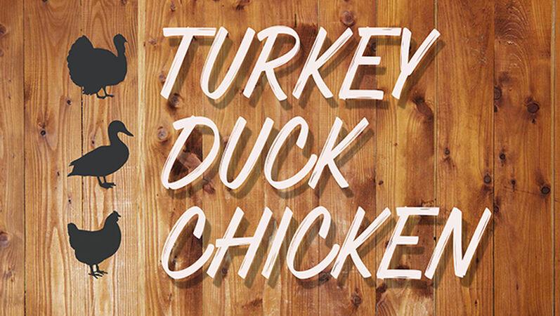 Turkey Duck Chicken
