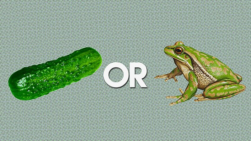 Pickle Or Frog? (November 14th, National Pickle Day)