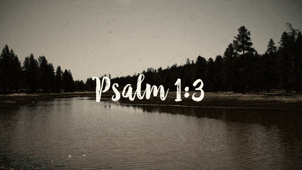 Psalm 1:3 Video image number null